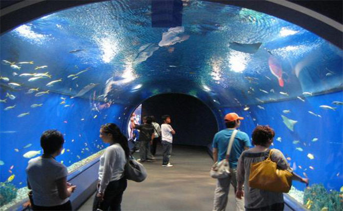 HURGHADA GRAND AQUARIUM 02